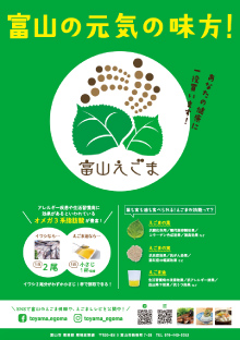 「富山えごま」普及啓発ポスター