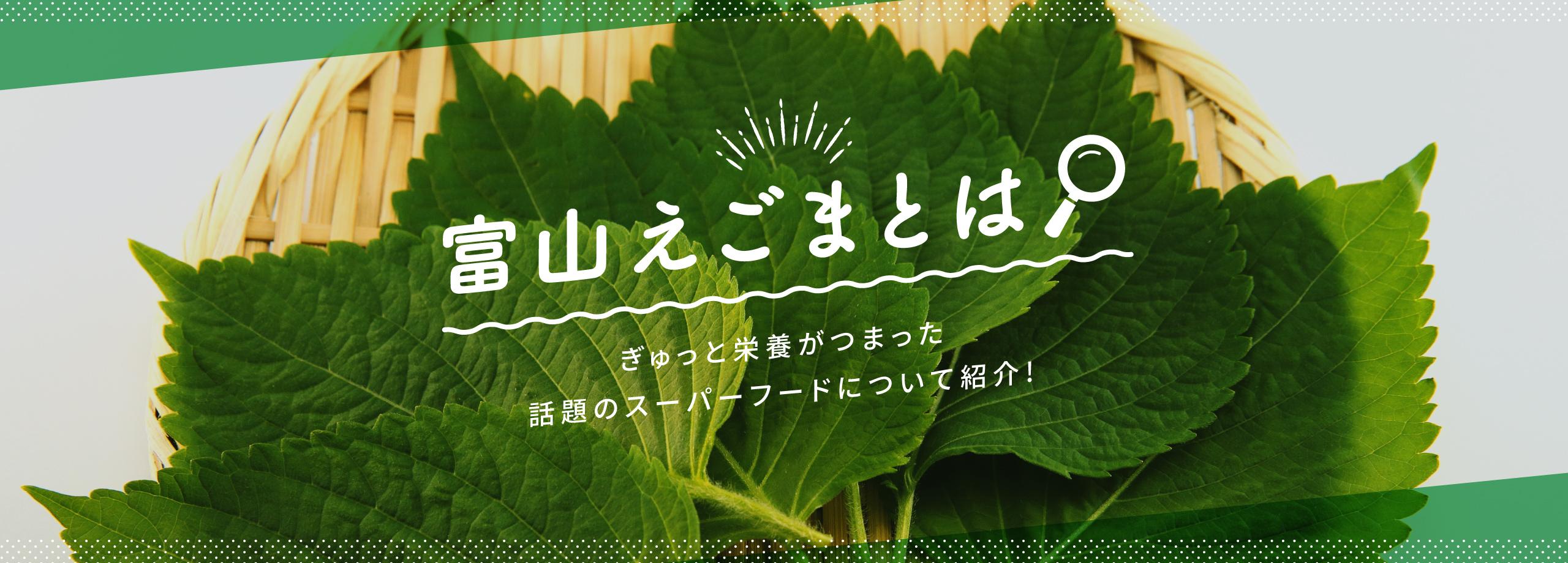 富山えごまとは ぎゅっと栄養がつまった話題のスーパーフードについて紹介!